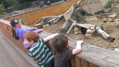 Yorkshire Wildlife Park – Review