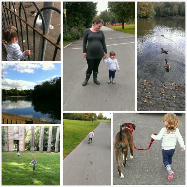 Autumn walk in Heaton Park