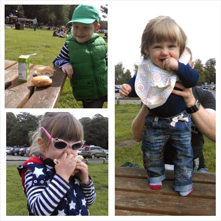 Tatton Park picnic