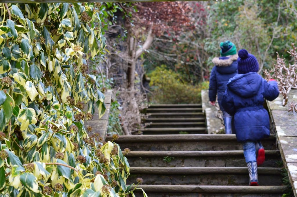Climbing the steps at Bodnant Garden