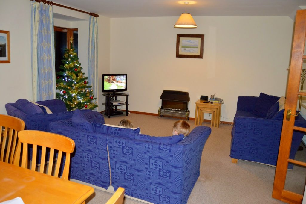 Coed Gelert Holiday Cottages - Living room