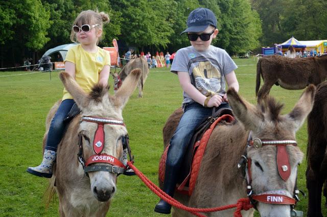 donkey rides at Geronimo Festival