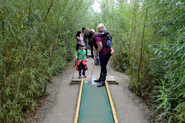 York Maze Crazy Golf