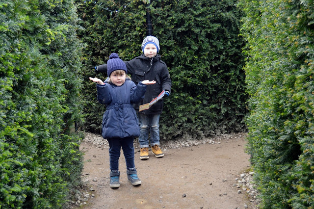 Getting lost in the maze at Stockeld Park