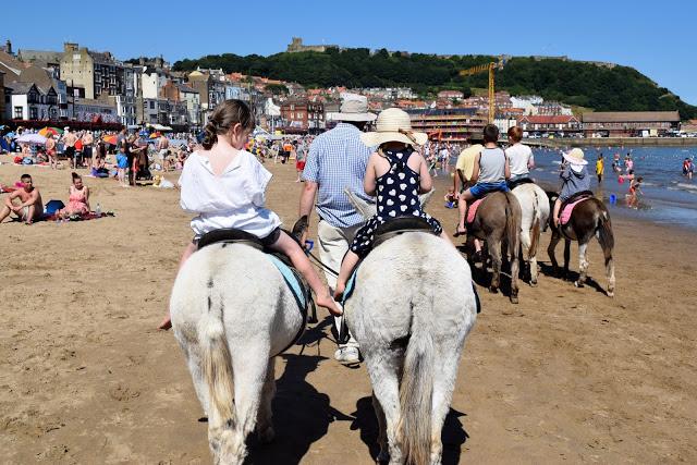 donkey riding in Scarborough