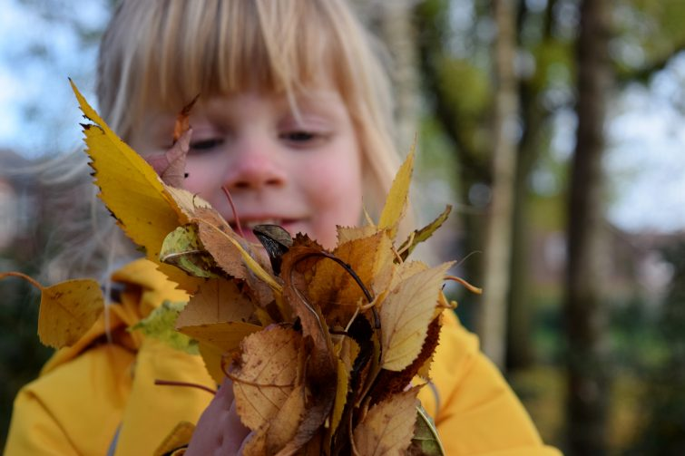 Toddler with handful of autumn leaves