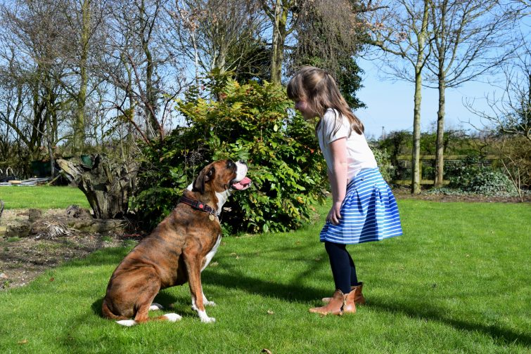 Little girl and boxer dog