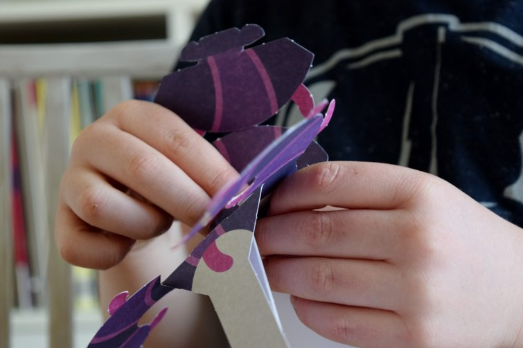 Make and Move Minibeasts - fold to make