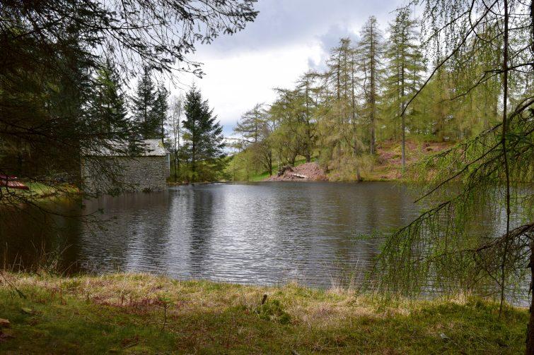 Woodsmoke base camp and tarn