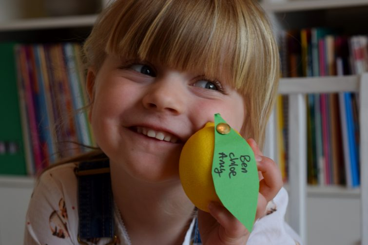 BEAR Yoyos Sours with natural lemon juice