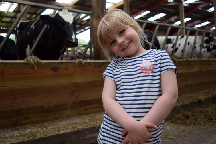 Amy and the cows at Smithills Open Farm with Piri Allergy
