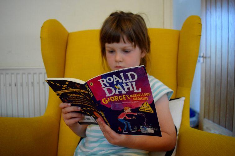 Roald Dahl - Puffin Summer Reading Campaign #startastory