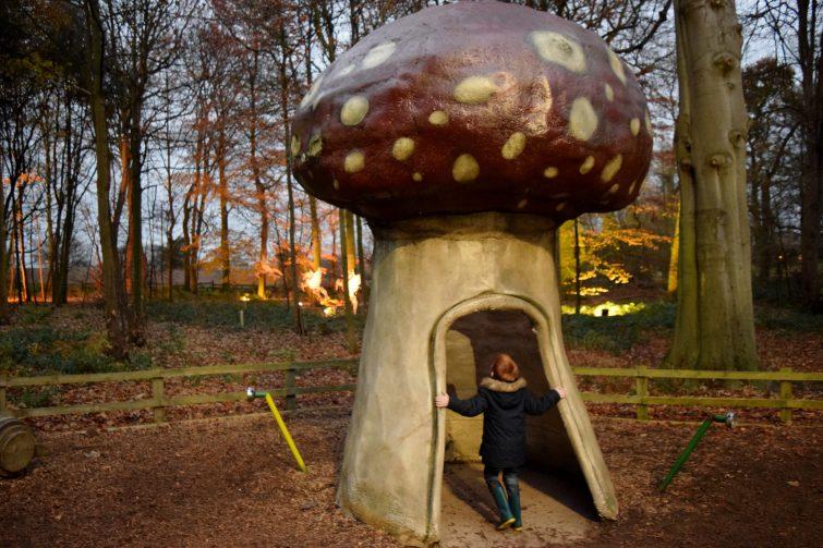 illuminated enchanted forest Christmas Adventure at Stockeld Park