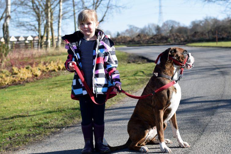 Dog walking with Reimatec jacket