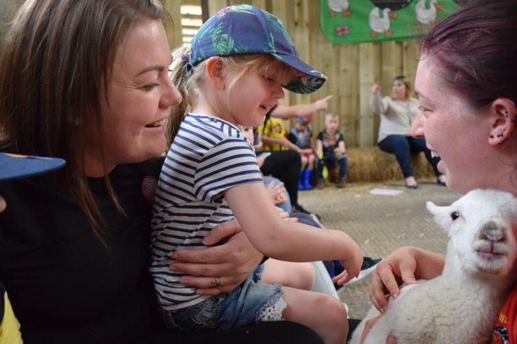 Baby lambs at Smithills Open Farm