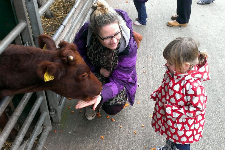 Reddish Vale Farm is perfect for little ones