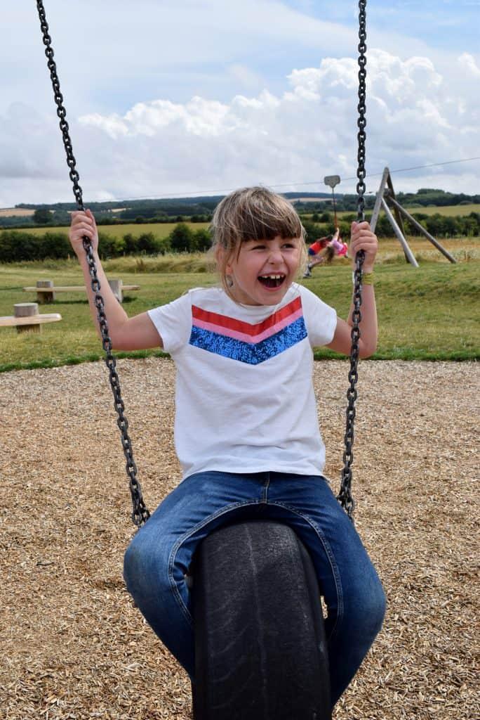 William's Den swings