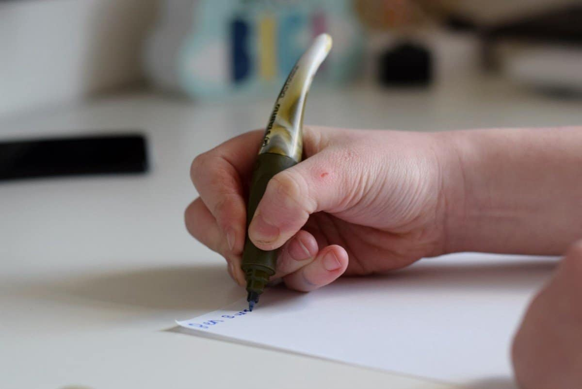 STABILO Easyoriginal handwriting pen