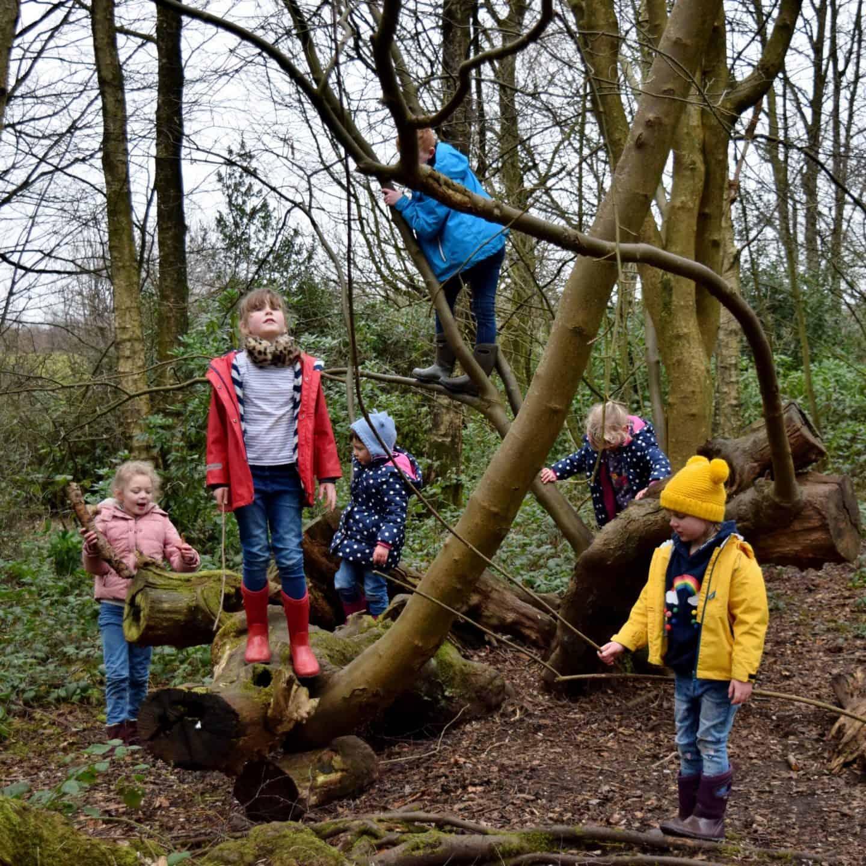 Kids climbing trees in Heaton Park