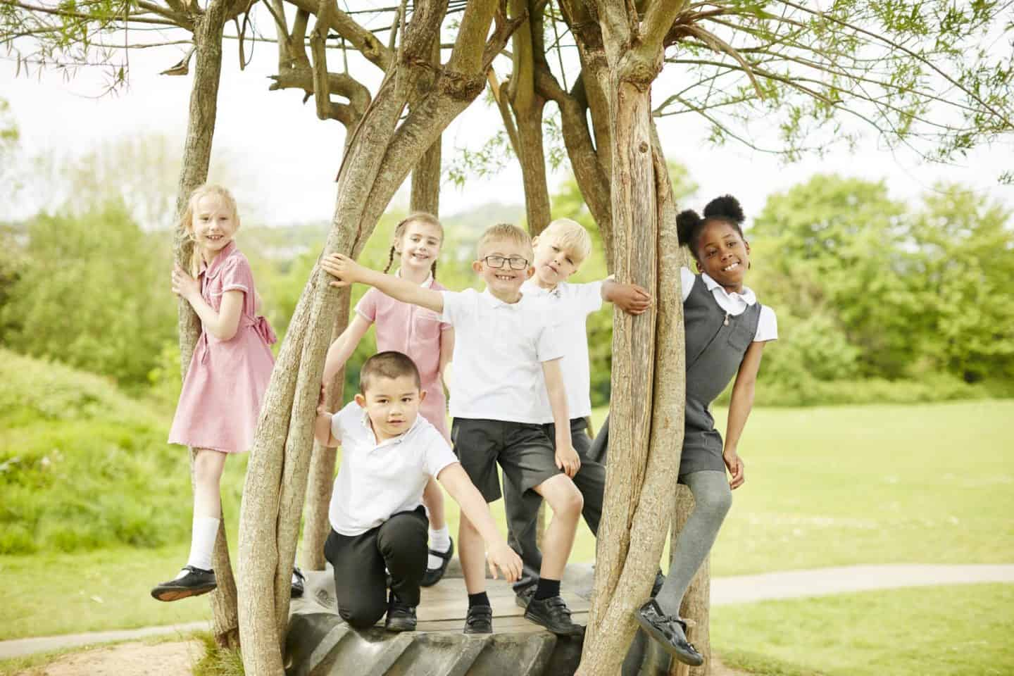 School children posing in a tree