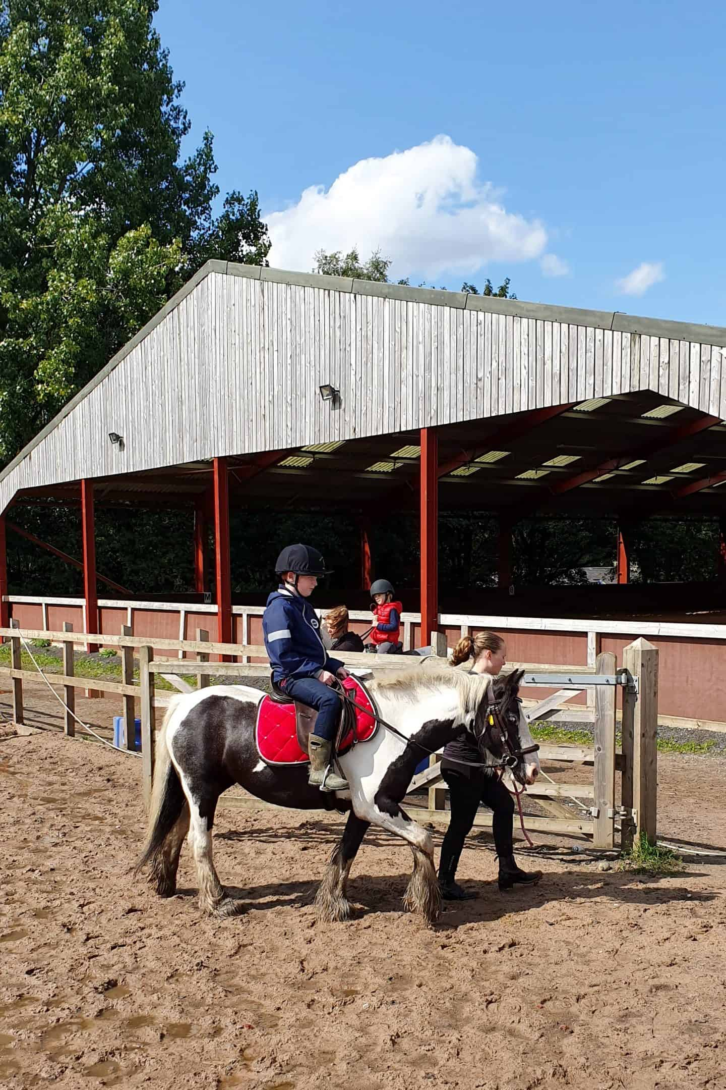 Horse riding lessons at Daisy Nook stables