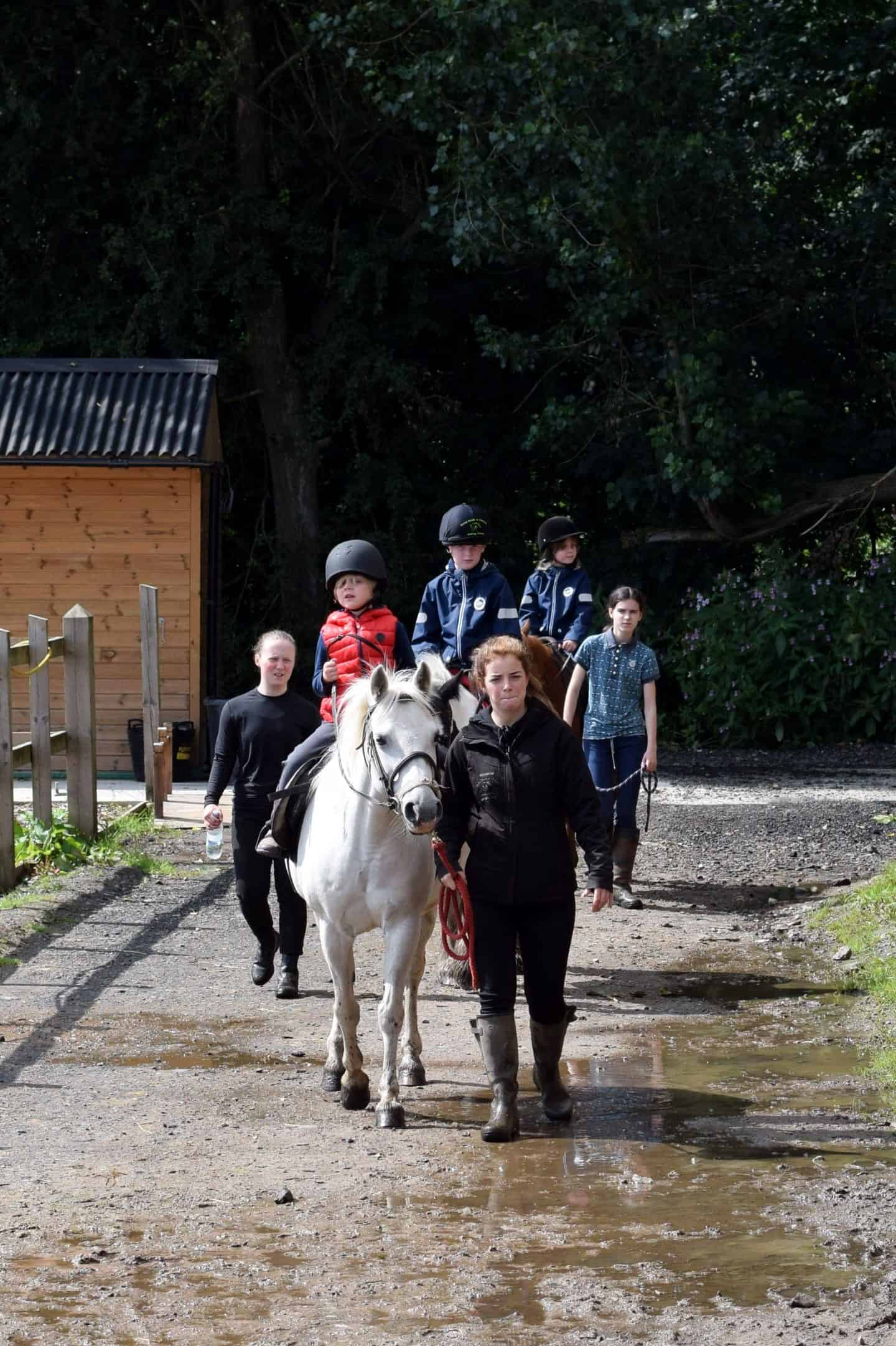 Horse riding lessons in Oldham