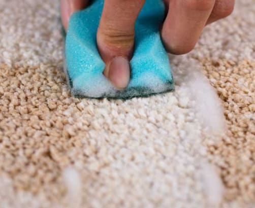 How to clean red wine stains from your carpet